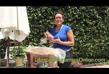 CSA Unboxing Videos / CSA Unboxing Videos  #CSA #Unboxing #Videos #foodie #organic #non-GMO