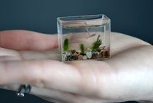 glass & miniatures