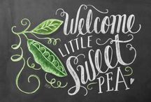 ~♡~Sweet pea Cottage~♡~ / Welcome to my board.Pin whatever inspires you.....no pin limits!!!!!
