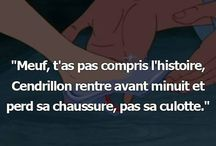 Dictons citations