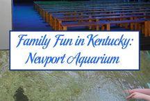 Museums Aquariums and Educational Destinations