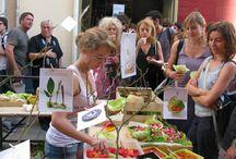 Alimentation durable et festivals
