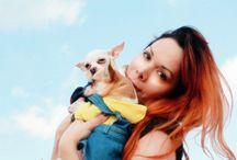 Mis chihuahuas / Mis adorables hijos Ken y Kendra Carbone