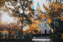 Baylor University / Pictures of best university out there! Sic' em Bears!