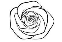 Dibujos de Flores para colorear / Si te encantan las flores y la primavera es tu época favorita del año este tablero te va a encantar. En él encontrarás todo tipo de flores para colorear y pasarlo genial descubriéndolas. Hay margaritas. lirios, dalias, narcisos, rosas... ¡Son geniales!