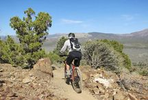 A World of Adventure / Put a little gravel in your travel with these adrenaline-filled Nevada adventures. / by TravelNevada