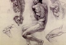 Arte / Disegni, quadri, tecniche artistiche