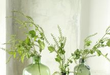 Shades of green-inspiration for interiors