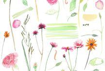 Çiçek/Flowers