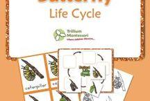 Montessori třísložkové karty