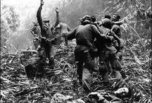 Vietnam War & the 60's / by Michael Remini
