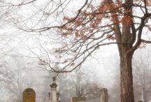 Graveyard serenity