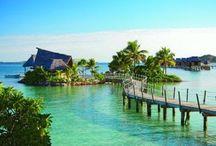 Fiji trip for friends wedding / by Erika Dart