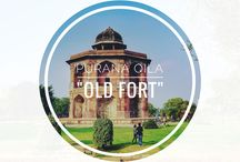Travel in India / Explore India with us