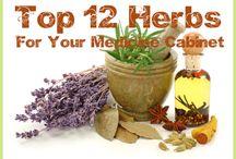 Herbs / by Melinda Haney