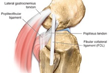 Posterolateral corner  / Injury to the posterolateral corner of the knee.