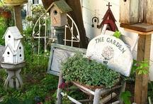 Garden - Birds neighborhood