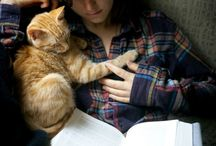 BOOKS - Cats Only!! / by Marge McCown