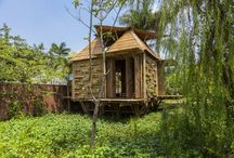 Bamboo Houses
