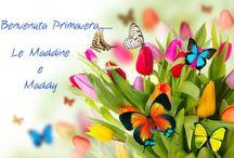 Le Maddine e la primavera
