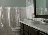 Sherwin-William's Top Bathroom Paint Colors / We asked Sherwin-Williams to share their most popular paint colors for bathrooms.  They are Sea Salt, Tradewind, Recycled Glass and Fashionable Gray.  / by MirrorMate Frames