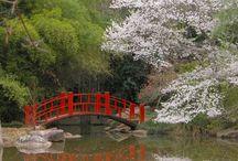 lovely Botanical gardens