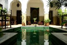 Arabian everything