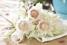 Ultimate Wedding Flowers - Blushing Brides