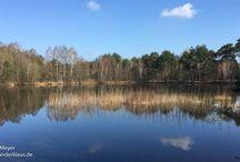Seen und Teiche