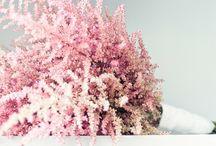 Bridal Bouquets   Brautsträuße / by Evet Ich Will