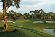 Tampa, Florida Golf Courses