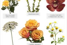 Flower recipes