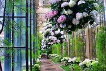 City Beautification Ideas