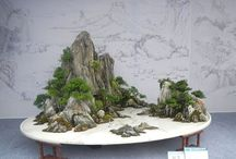 Suiseki / Suiseki are small naturally occurring or shaped rocks which are traditionally appreciated