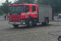 paloauto