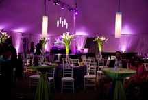 Up lighting (Uplighting) / Pics of various venues in the Capital Region and beyond featuring our Up lighting fixtures!