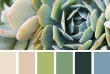color pallets / color combos that work