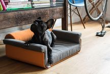 Pullmann by chillypets / Interior design for pets.