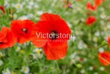 Bethnal Green / #BethnalGreen #London #Victorstone www.victorstone.co.uk