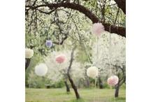 Bridemaids und Fotovorlagen