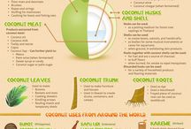 All About Coconut / All About Coconut via #sustainableyum