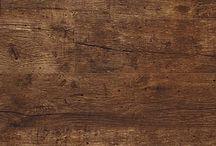 Mariankatu puulajeja