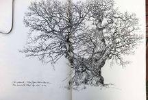 arbres trees