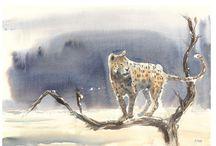 Wildlife Art animal paintings in watercolour / Wildlife art and animal art original paintings in watercolour