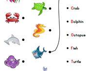 Ocean Fun Activities and Worksheets
