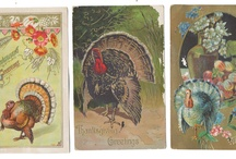 Vintage Thanksgiving Postcards / by Forgotten Bookmarks
