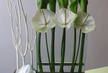 Flower Arrangments - Modern