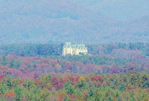 Biltmore Estate / by Sharon Brown