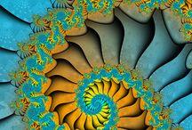 spirals / fractal / by Christine Cuchiara
