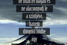 Bölcsek
